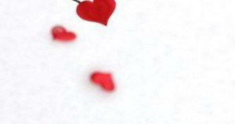 14-fevralya-den-vseh-vlyublennyh-den-svyatogo-valentina-istoriya-i-traditsii-prazdnika...
