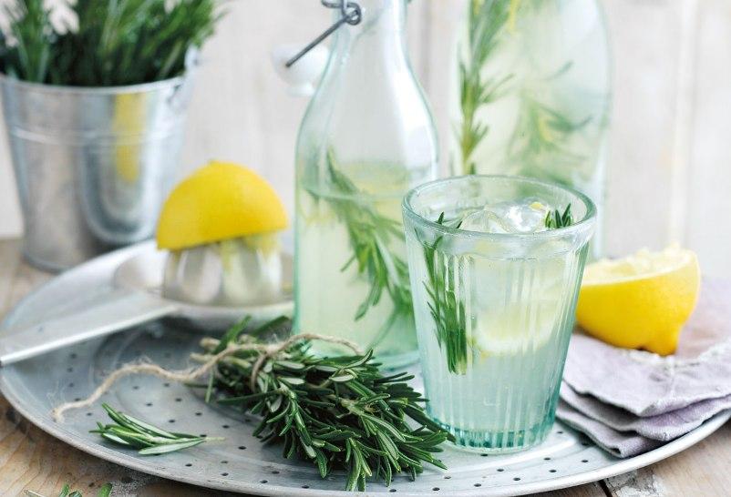 retsepty-naturalnogo-domashnego-limonada-pyat-raznyh-retseptov-kak-prigotovit-foto-s-razmarinom-i-ukropom-limonad