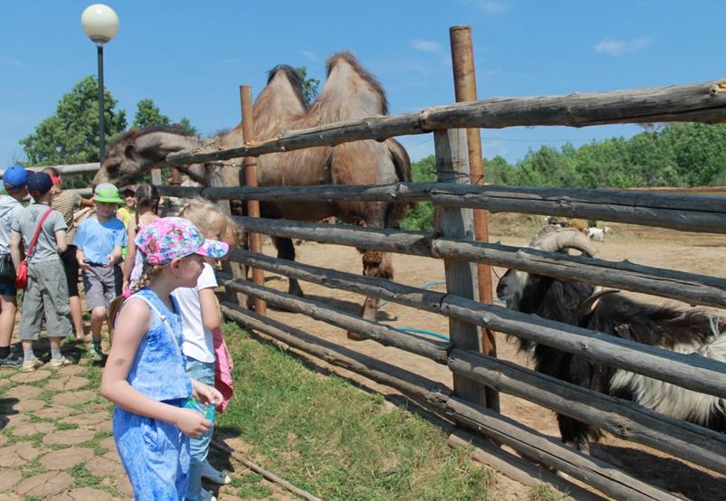 Zoopark-sofari-peshelan-nizhegorodskaya-oblast