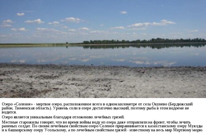 ozero-solyonoe-okunyovo-tyumenskaya-oblast