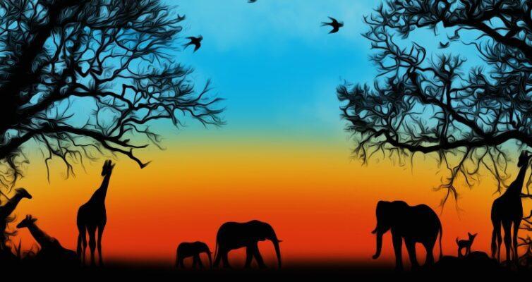 avstraliya-i-afrika-v-chem-raznitsa-i-otlichie-opisanie-i-foto-afrika-priroda-savana