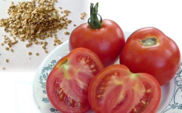 kak-pravilno-zagotovit-svoi-semena-ogurtsov-i-pomidor-v-domashnih-usloviyah-semena-tomatov