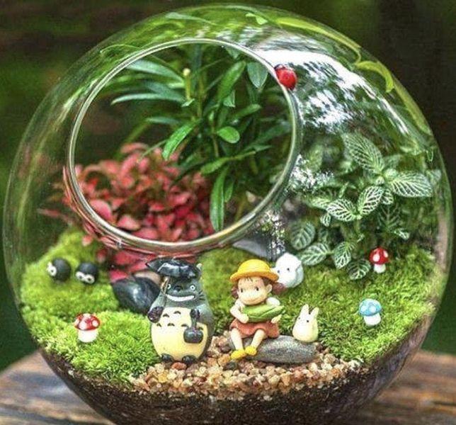 idei-podarkov-chto-podarit-zhene-na-den-rozhdenie-foto-rastitelnyy-terarium